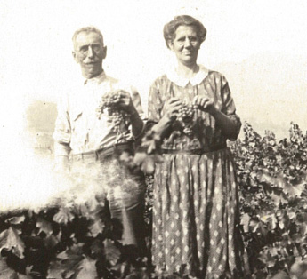First generation, Libero & Mary Pocai in their Calistoga vineyard